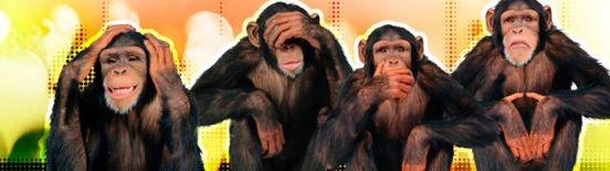 Die 4 Affen